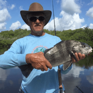 angler holding a fresh caught black drum in naples
